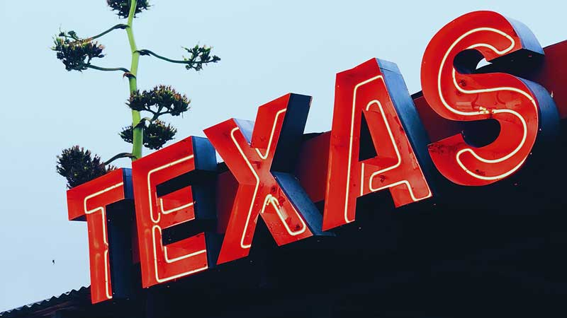 Texas pension adds over $400 million to niche alts