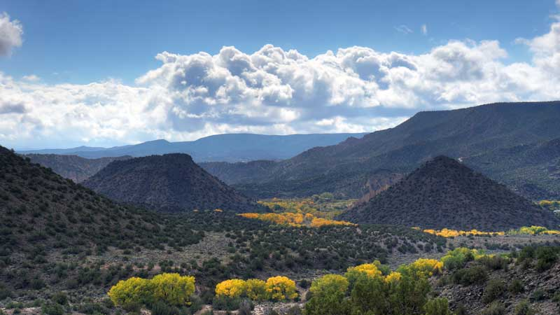 New Mexico adds $150m to PE, establishes fund for COVID-19 economic response