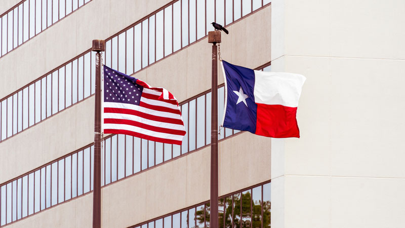 Texas pension commits $725m to private equity, real estate