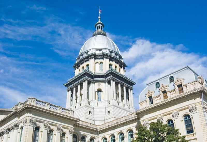 Illinois pension builds diversity commitment, adds alts managers