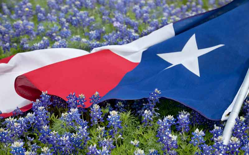 Texas County pension taps lending, PE funds