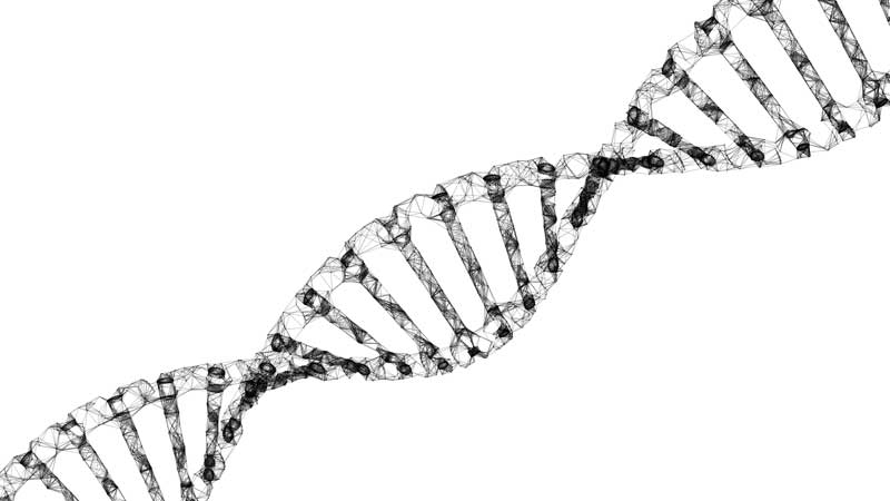 AW Healthcare Beat: Private equity, hedge funds back gene therapy promise