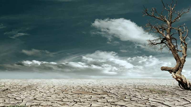 Man Numeric hiring climate scientist