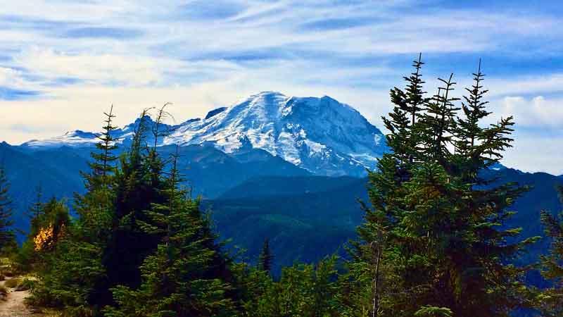 Washington State allocates over $4bn to private markets