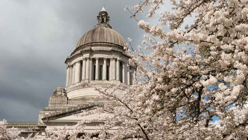 Washington State Investment Board preps for new executive director