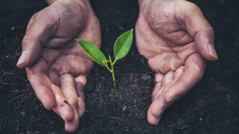 Paloma Partners taps new SS&C ESG tech